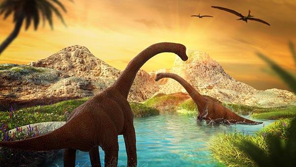 v gosti k dinozavram glav